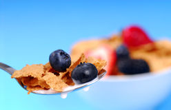 Spoonful of bran flakes with fruit Royalty Free Stock Image