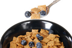 Spoonful of cereal Stock Images