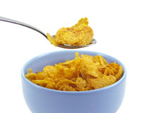 Spoonful of cereal flakes. Cereal flakes in a blue bowl on white background Stock Photography