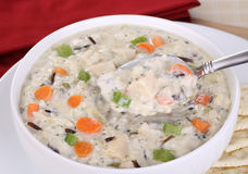 Spoonful of Chicken and Rice Soup Royalty Free Stock Photos