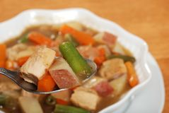 Spoonful of chicken stew Stock Photography