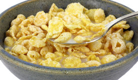 Spoonful Coated Flake Cereal. A spoonful of refreshing breakfast cereal with milk Stock Photography