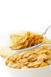 Spoonful of corn flakes Stock Image