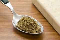 Spoonful of cumin seeds Stock Image
