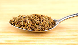 Spoonful of cumin seeds against wooden background Stock Photography
