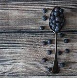 Spoonful czarne jagody zdjęcie stock