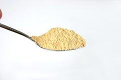 Spoonful di polvere Fotografie Stock