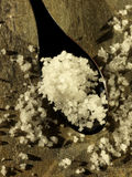Spoonful do sal do mar de Fleur de sel do rande de Gu Fotografia de Stock