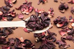 A spoonful of dried hibiscus tea on a wooden brown background stock images