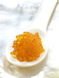 Spoonful of fish roe Royalty Free Stock Image