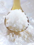 Spoonful of Fleur de sel sea salt from Gu rande Royalty Free Stock Photo