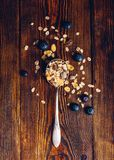 Spoonful of Granola and Blueberry. Royalty Free Stock Images