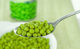 A Spoonful of Green Peas Stock Image