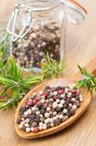Spoonful Of Peppercorns. Wooden spoonful of tri colour peppercorns with fresh herbs Stock Photos