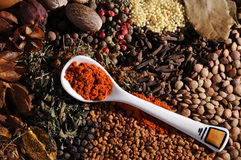 Spoonful of spice. On top of other spices royalty free stock photos