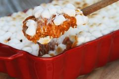 Spoonful of Sweet Potato Casserole Baked with Mini Marshmallows. Being served for Thanksgiving Day dinner. Extreme shallow depth of field with selective focus Stock Image