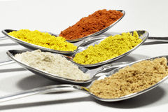 Spoonfuls of several types of spices and food coloring Royalty Free Stock Image