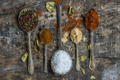 Spoons with colorful spices - closeup Stock Photography