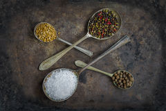 Spoons with colorful spices - closeup Royalty Free Stock Image