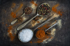 Spoons with colorful spices - closeup Royalty Free Stock Photos