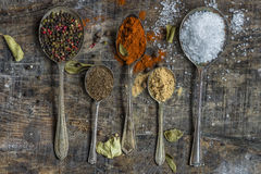 Spoons with colorful spices - closeup Royalty Free Stock Photography
