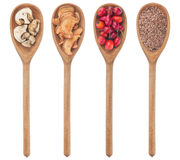 Spoons with flax, mushrooms, wild rose, apple Royalty Free Stock Images