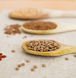 Spoons, grain and legumes Stock Photos