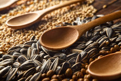 Spoons and grains Stock Images