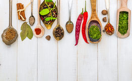 Spoons with herbs and spices Royalty Free Stock Photo