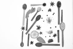 Spoons with kitchen herbs, star anise and bay leaf on white background. Composition of spoons with spices and dried. Ingredients. Spoons filled with kitchen vector illustration