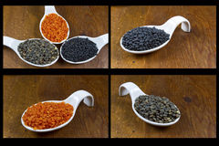 Spoons of Lentils Royalty Free Stock Photo