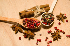 Spoons with a mixture of grains of pepper, cinnamon and star ani Stock Photos