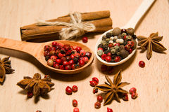 Spoons with a mixture of grains of pepper, cinnamon and star ani Royalty Free Stock Image