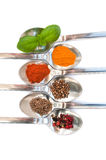 Spoons with spice Royalty Free Stock Photo