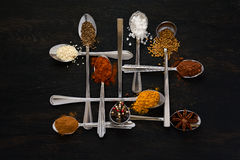Spoons with spices Royalty Free Stock Photos