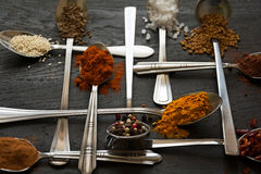 Spoons with spices Stock Photography