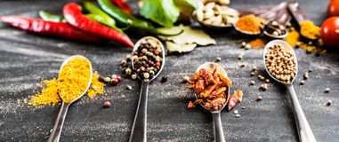 Spoons with spices Royalty Free Stock Photo