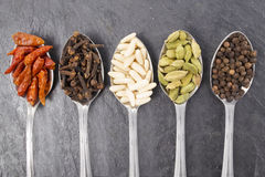 Spoons & spices Royalty Free Stock Photo