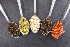 Spoons & spices Royalty Free Stock Photos