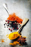 Spoons with spices Royalty Free Stock Image