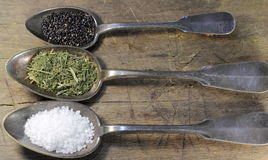 Spoons with spices Stock Images