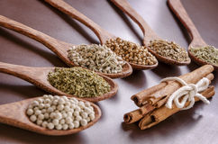 Spoons of spices Royalty Free Stock Photos