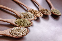 Spoons of spices Royalty Free Stock Image