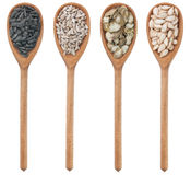 Spoons with sunflower and pumpkin seeds Royalty Free Stock Photography