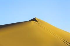 Spoor op duin in woestijn stock afbeeldingen