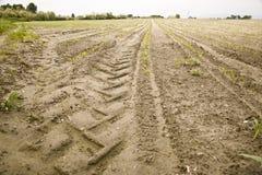Spoor van de band van een tractor op een gebied Royalty-vrije Stock Fotografie