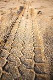Spoor van de beschermer op zand Stock Foto