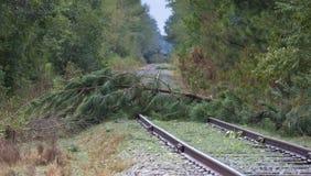 Spoorlijn door bomen wordt geblokkeerd die royalty-vrije stock afbeelding