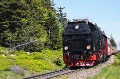 Spoorweg aan Brocken-Berg Stock Foto