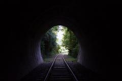 Spoorweg in aard Royalty-vrije Stock Foto
